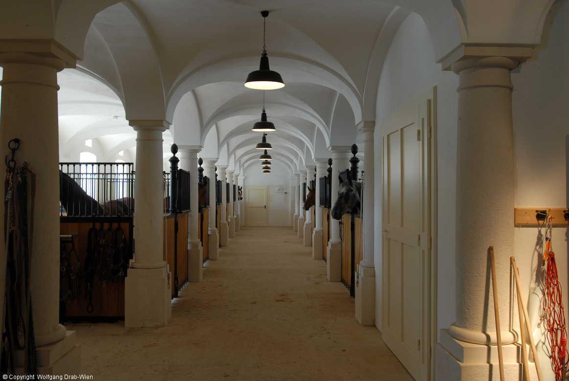Luxus Pferdestall alone kapitel 21 katharinas fanfiktion de